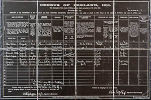 Census of Ireland 1911 on slate background