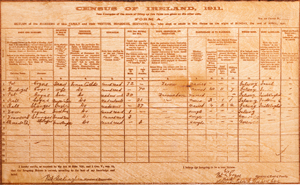 Census of Ireland 1911 produced on wood